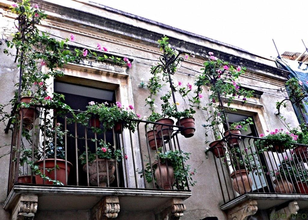 balcony-with-flowers24-1024x732.jpg