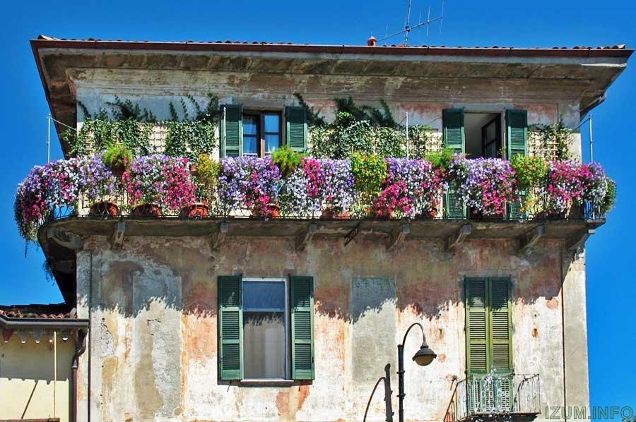balcony-with-flowers28.jpg