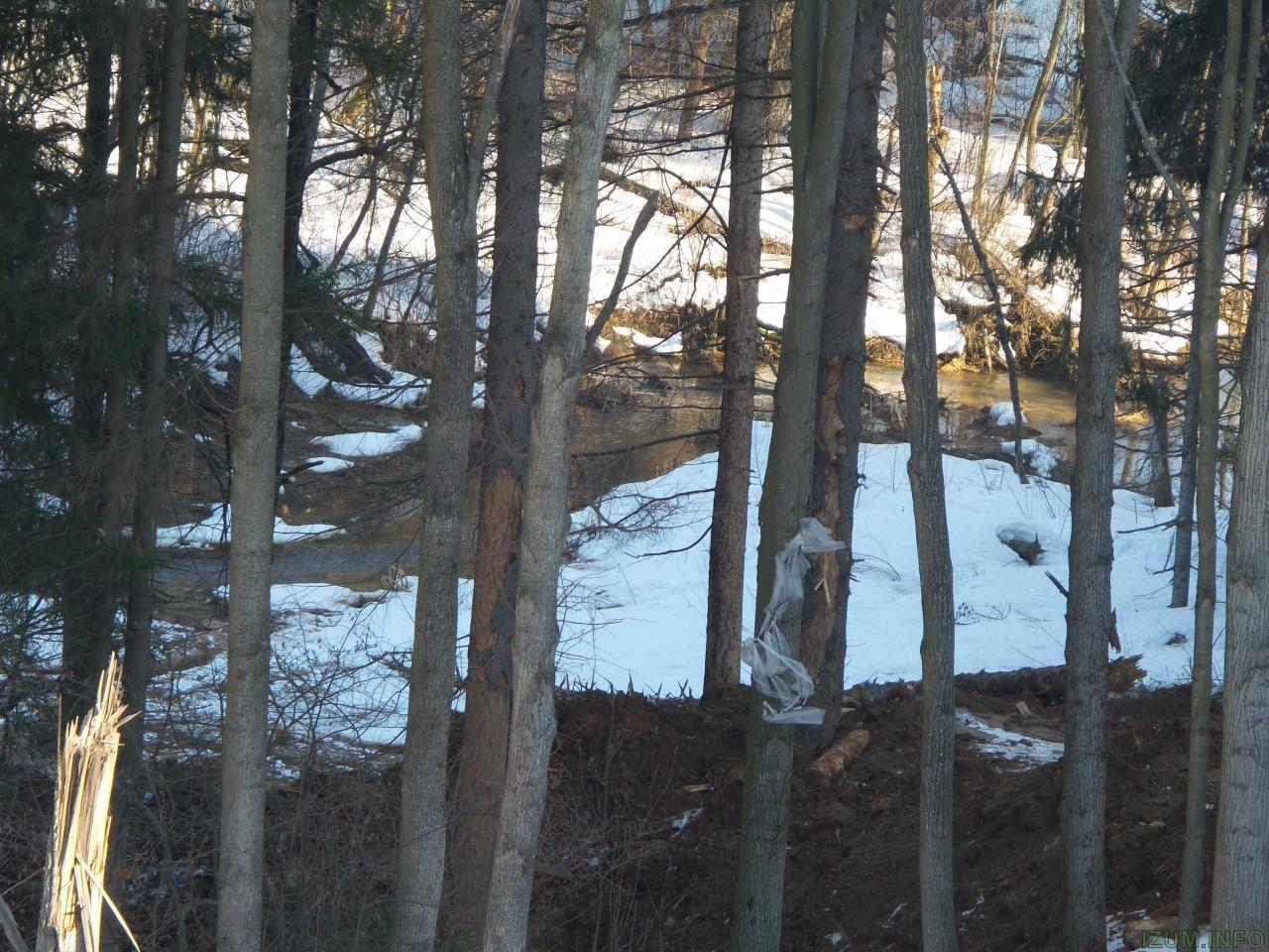 Река Банька мусор со стройки izum.info (6).jpg