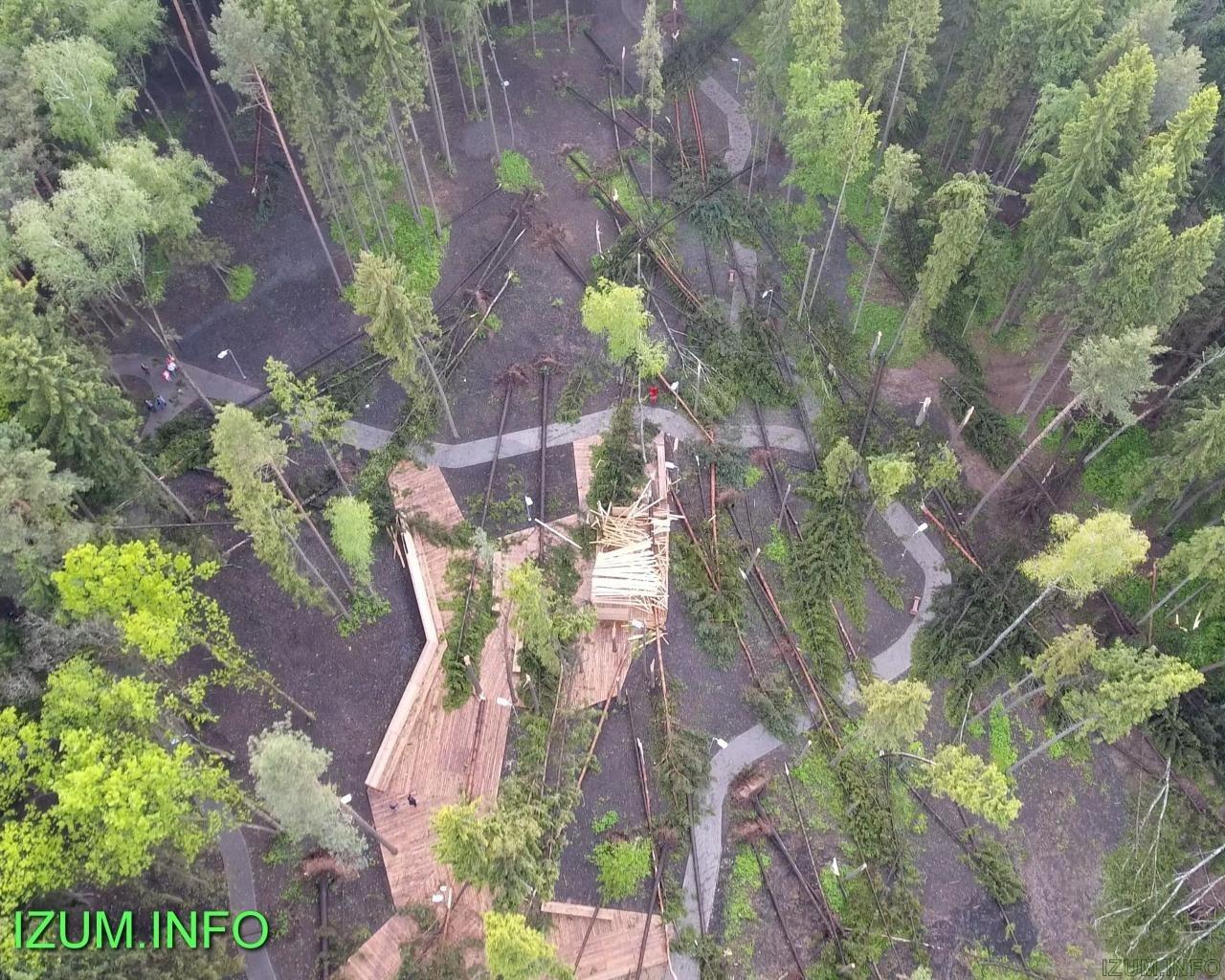 Изумрудные холмы парк после урагана (5).jpg