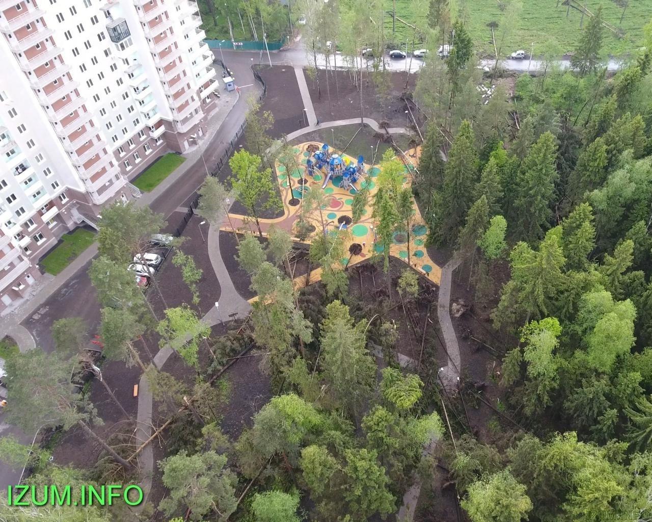Изумрудные холмы парк после урагана (7).jpg