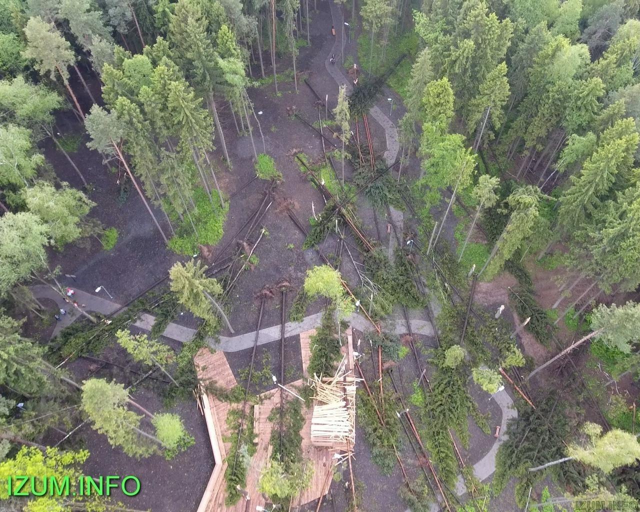 Изумрудные холмы парк после урагана (6).jpg