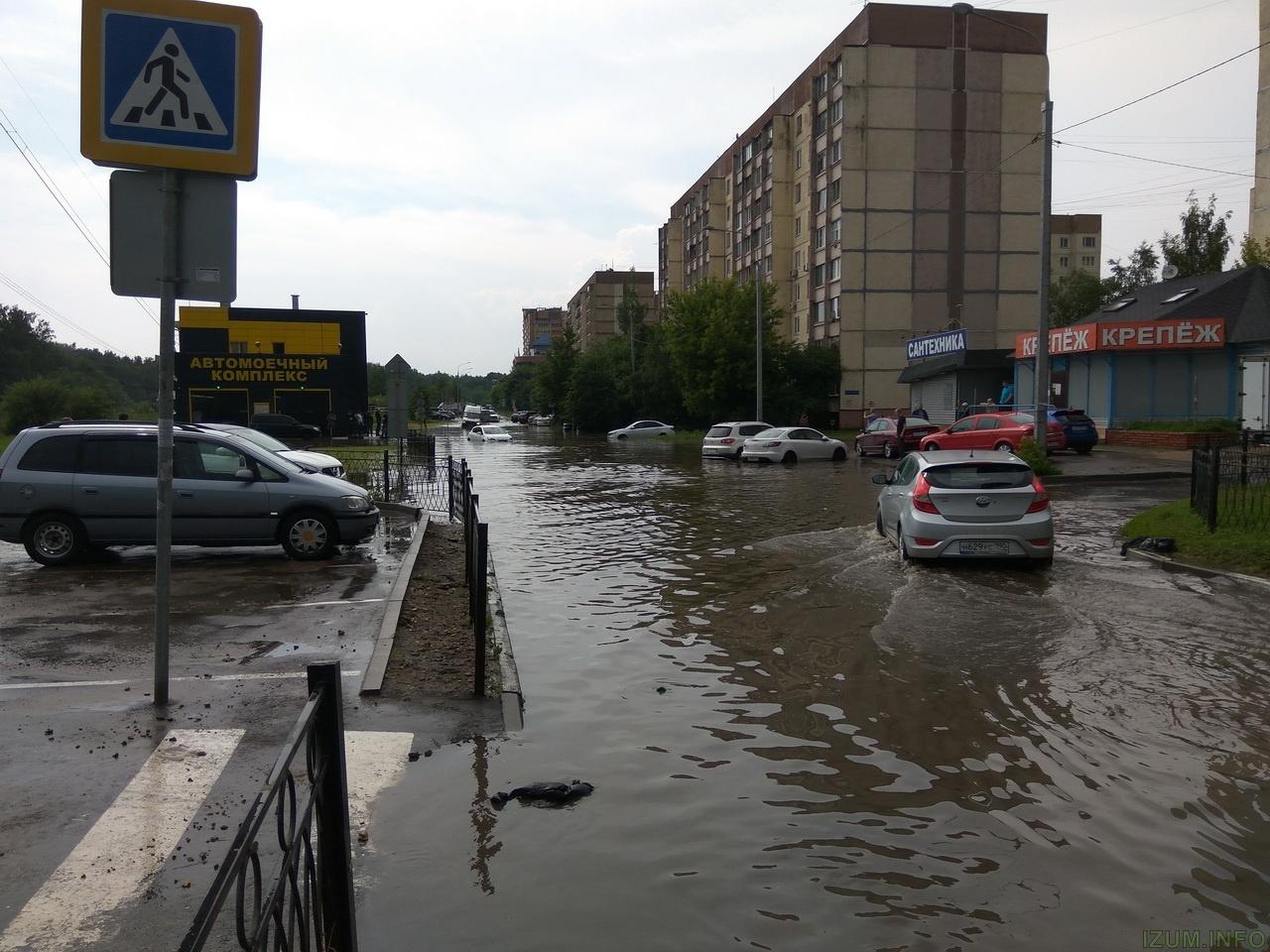 Лифень в Красногорске и холмах 30.06.17 (2).jpg