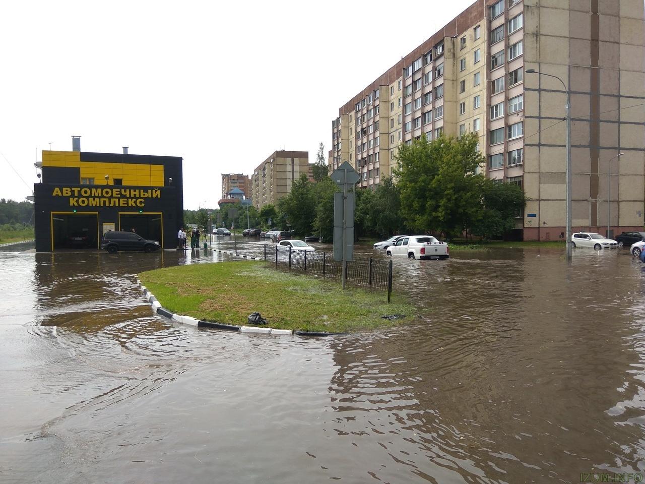 Лифень в Красногорске и холмах 30.06.17 (4).jpg