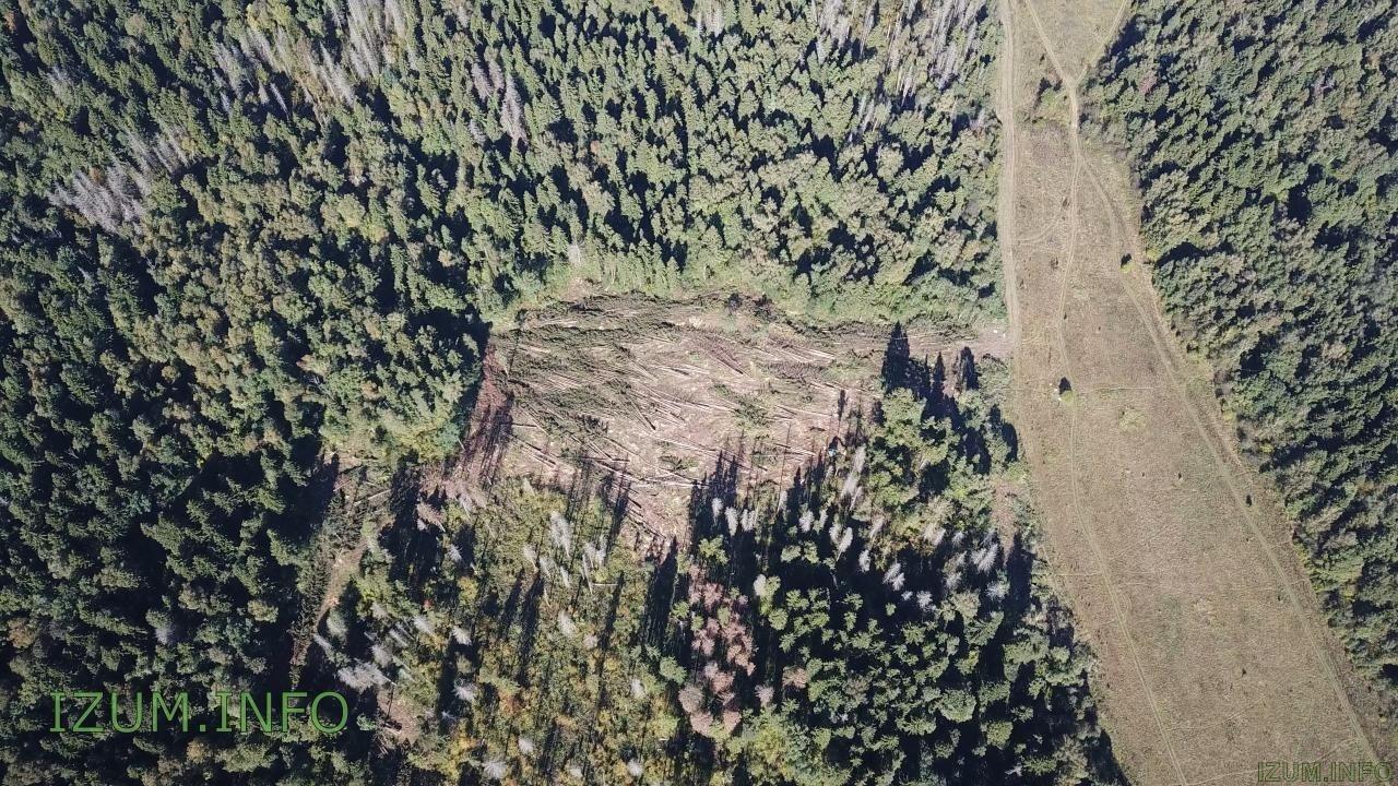 Изумрудные холмы полёт стройка Черневская горка (42).jpg