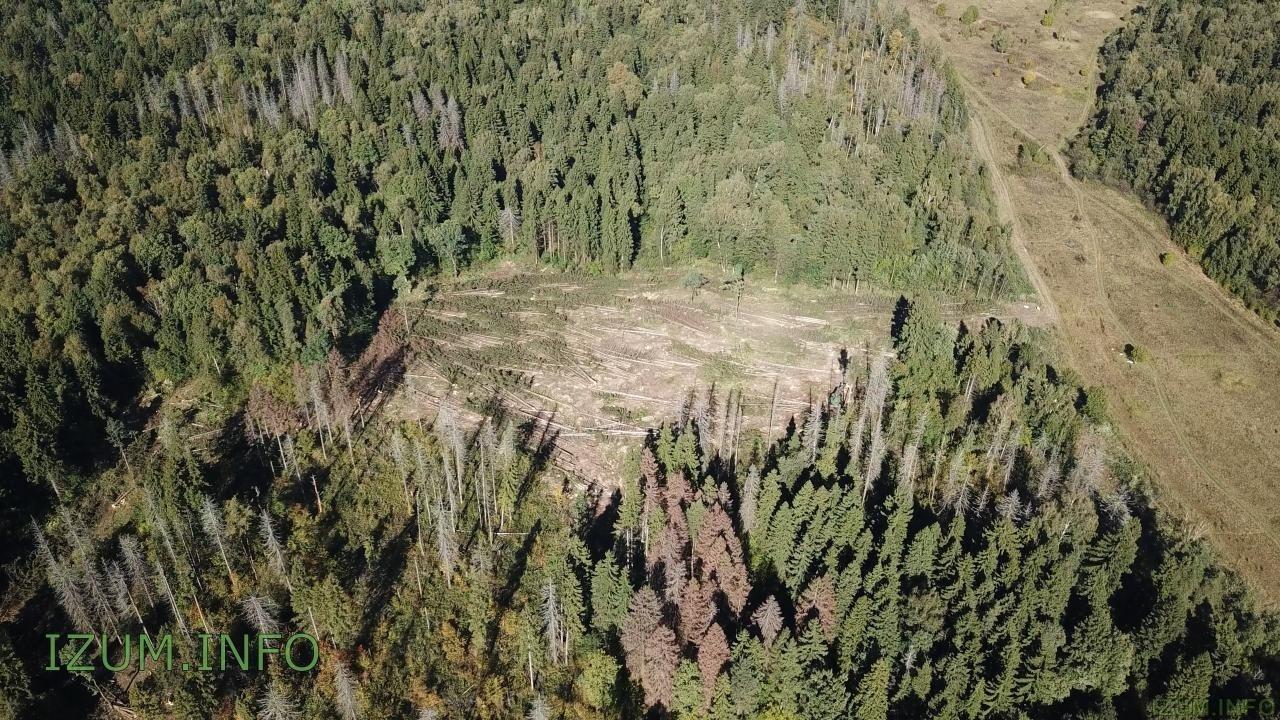 Изумрудные холмы полёт стройка Черневская горка (35).jpg