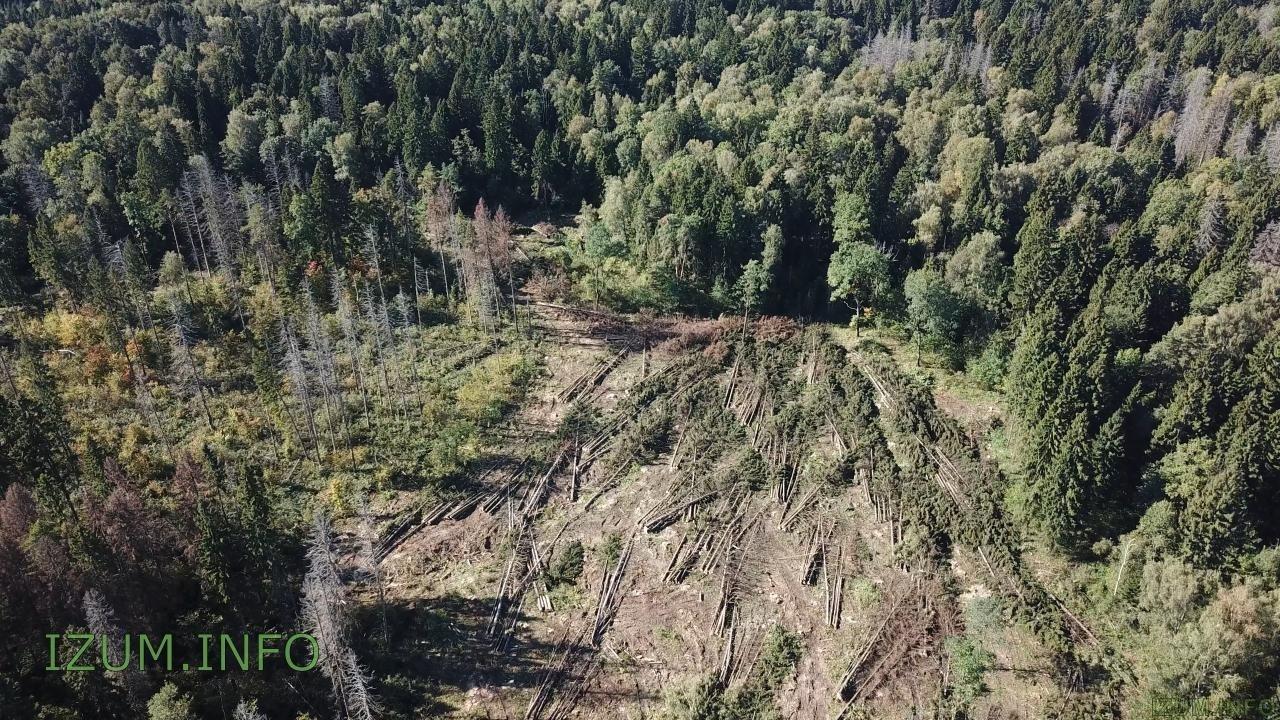 Изумрудные холмы полёт стройка Черневская горка (10).jpg