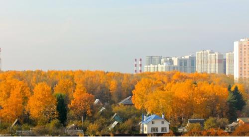 Золотая осень Холмы.png