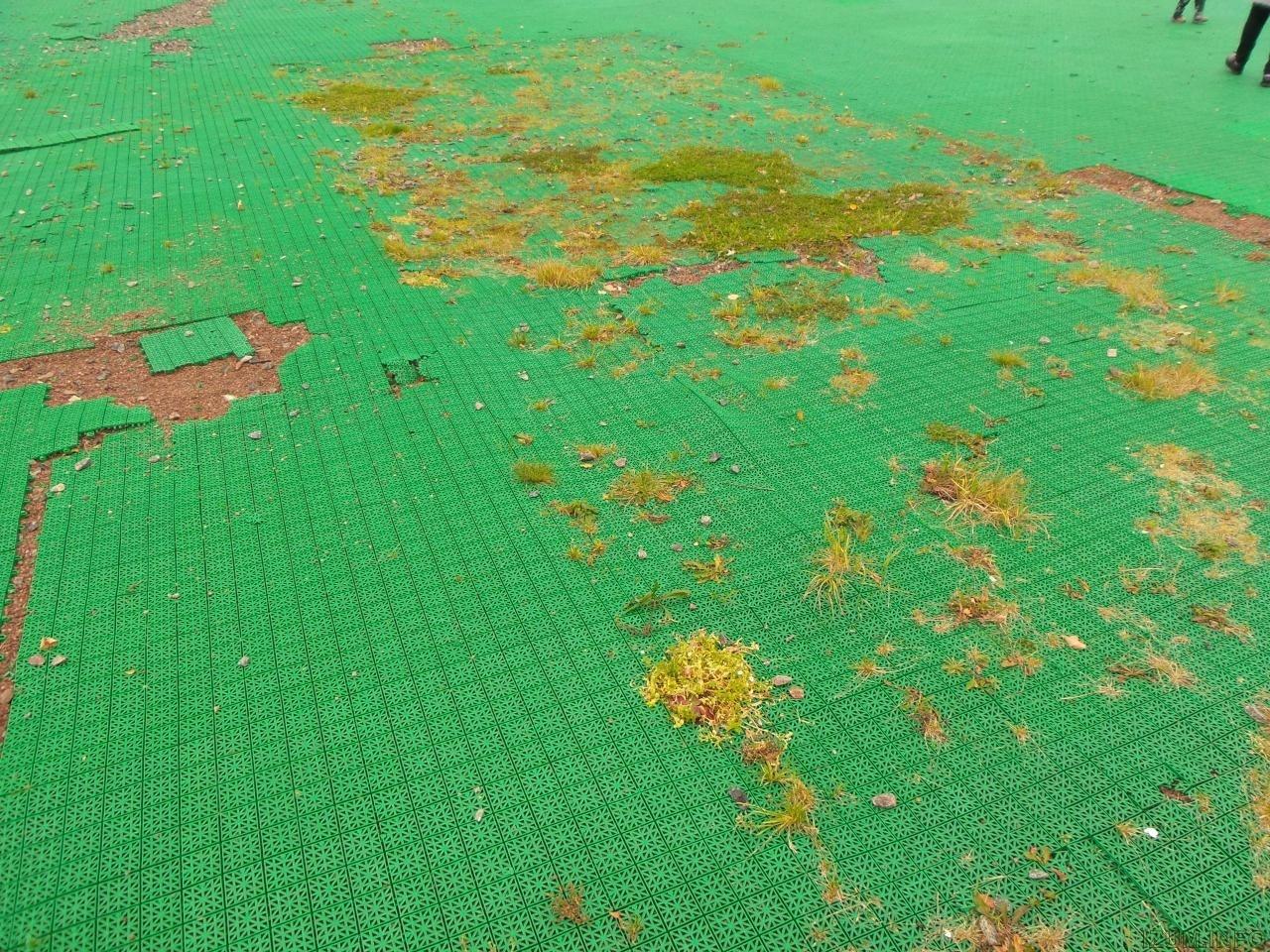 Изумрудные холмы спортивные площадки (3).jpg
