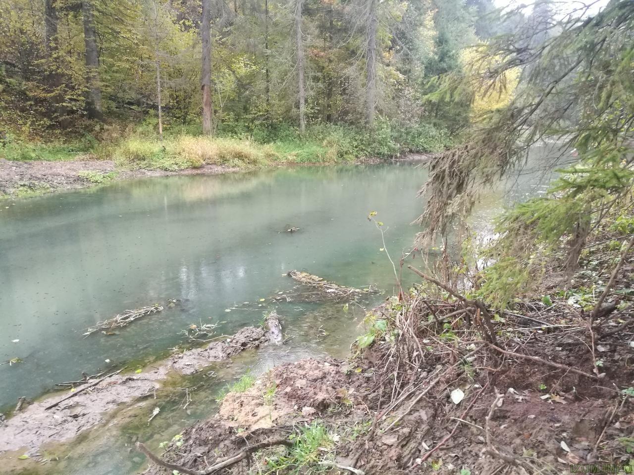 Изумрудные холмы речка  (5).jpg